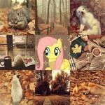 Autumn Fluttershy Moodboard
