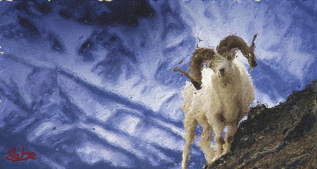 Mountain Goats Tour Poster