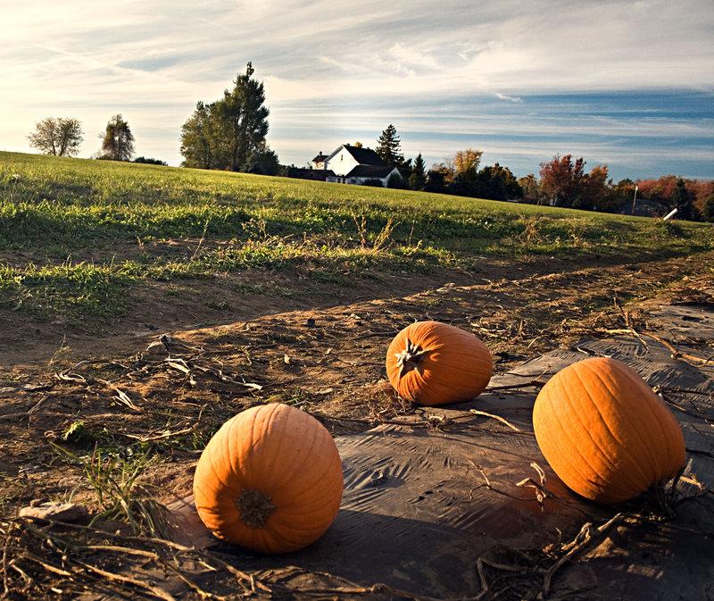Fall in New England by aeroartist
