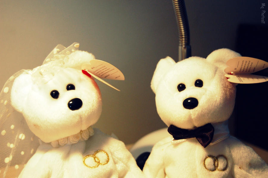In Stuffed Animal Marriage... by MonkeyQueeen