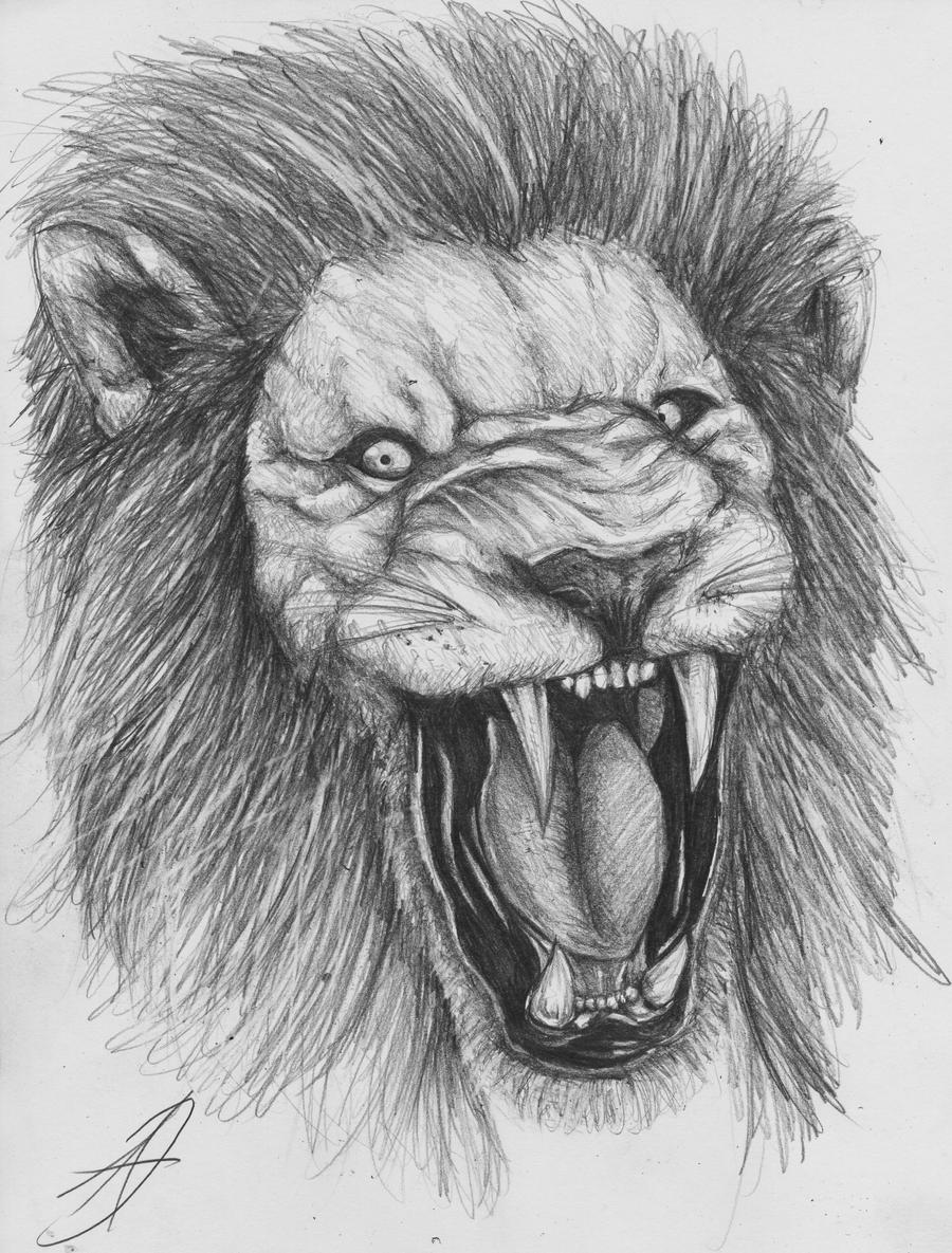lion sketch by darkartistdomain traditional art drawings animals 2010 ...