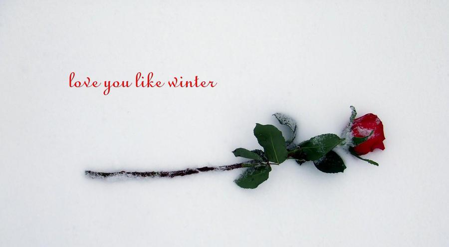 Love you like winter