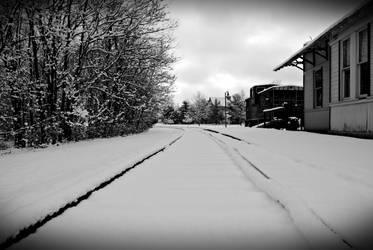 Winters beauty 2