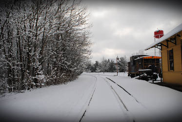 Winters Beauty 4
