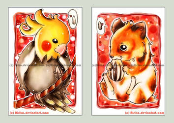 Cockatiel and hamster love... by Ririko