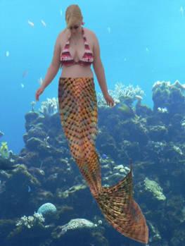 Whoa I'm A Mermaid