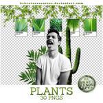 Plants pngs