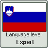 Slovenian language level stamp by Chigle