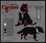 Wz - Caylen character sheet