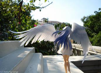 Angel's Walk