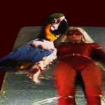 Polly Want a BOOBIE by ORcaMAn001