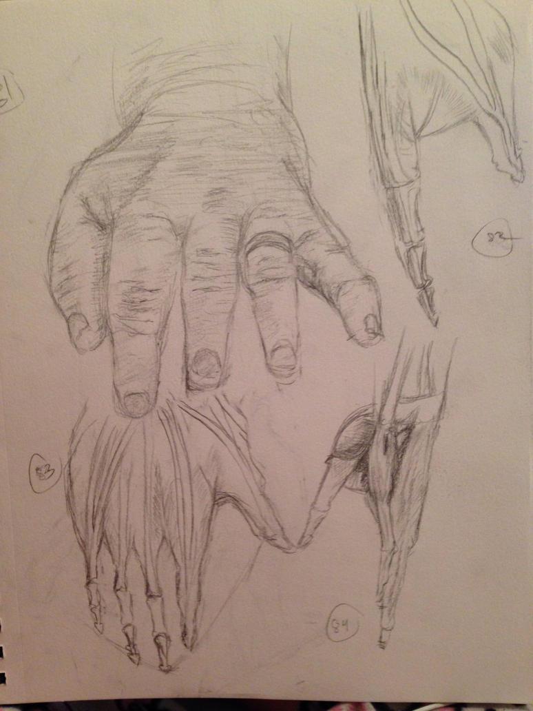 100 Hands: 81-84 by SaturnSirene