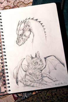 The Dragon and the Rascal