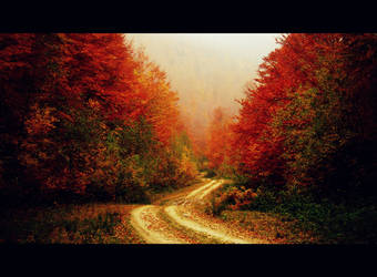 the way home by mihmann