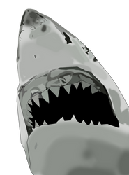 Bruce from JAWS 1975 by CaptainEdwardTeague