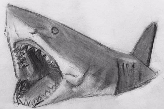 Bruce from JAWS 1975