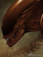 Xenomorph Warrior by Sunglasses-afterDARK