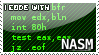 I code with NASM stamp by Raidho36