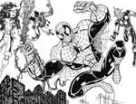 Spider-Bulk