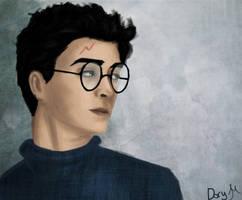 Harry by ribkaDory