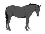 P2U horse lines - 50 pts.