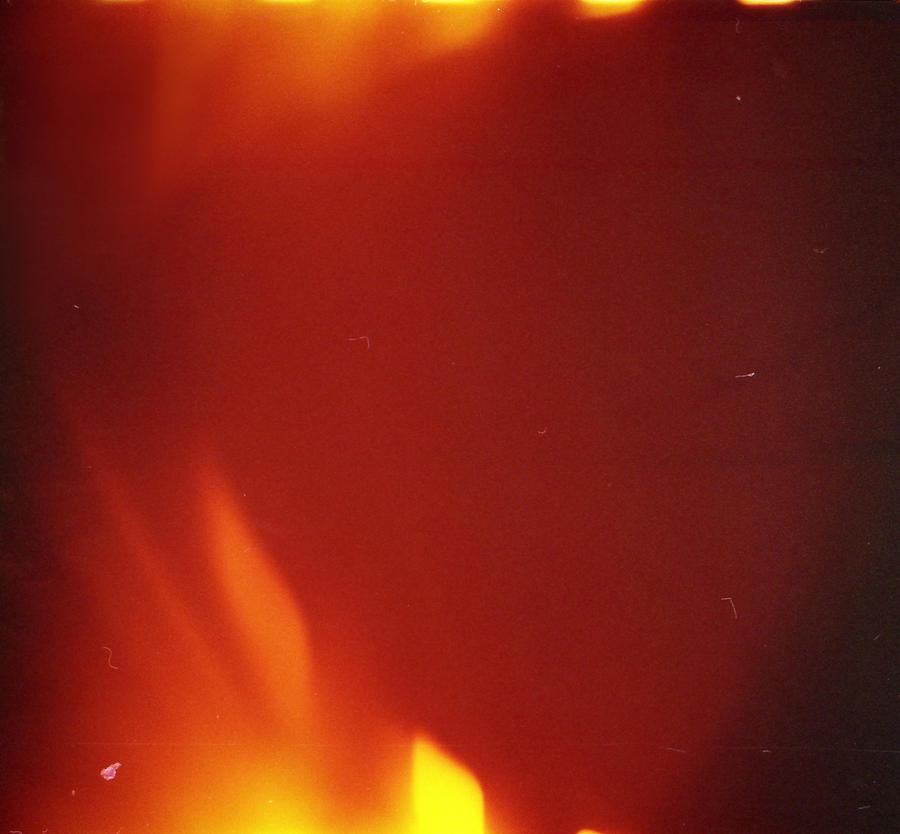 .phoenix embrace. film texture by missAlienation-stock