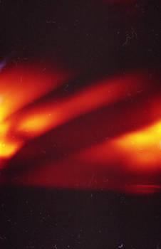 .phoenix kiss. film texture
