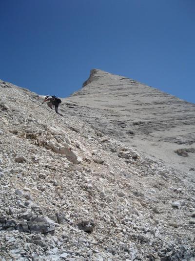 snowphoenix2006's Profile Picture