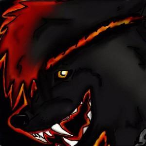 XXAngryLoneWolfXX's Profile Picture