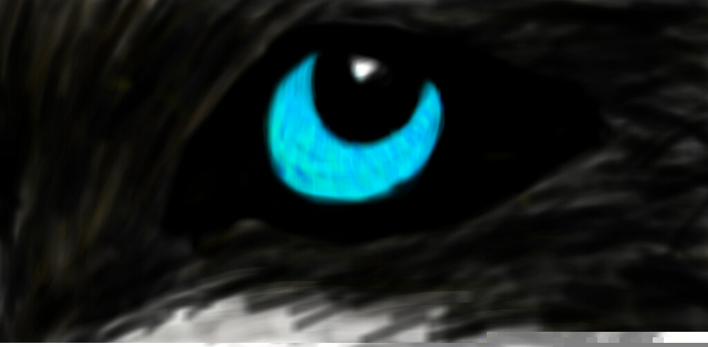 eye by XXAngryLoneWolfXX