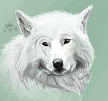White Wolf by matsmoebius