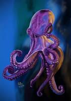 Octopus by matsmoebius