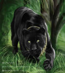 Panther (Commission) by matsmoebius