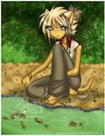 Feeding the Koi