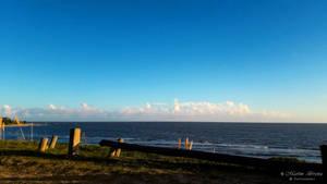The Line Of Horizon