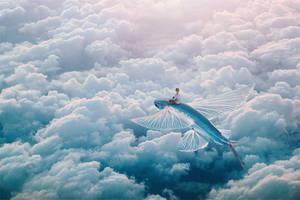 Plane by Apachennov