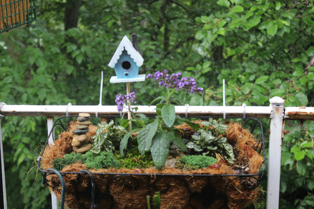 Fairy Garden 5 by Dellessanna