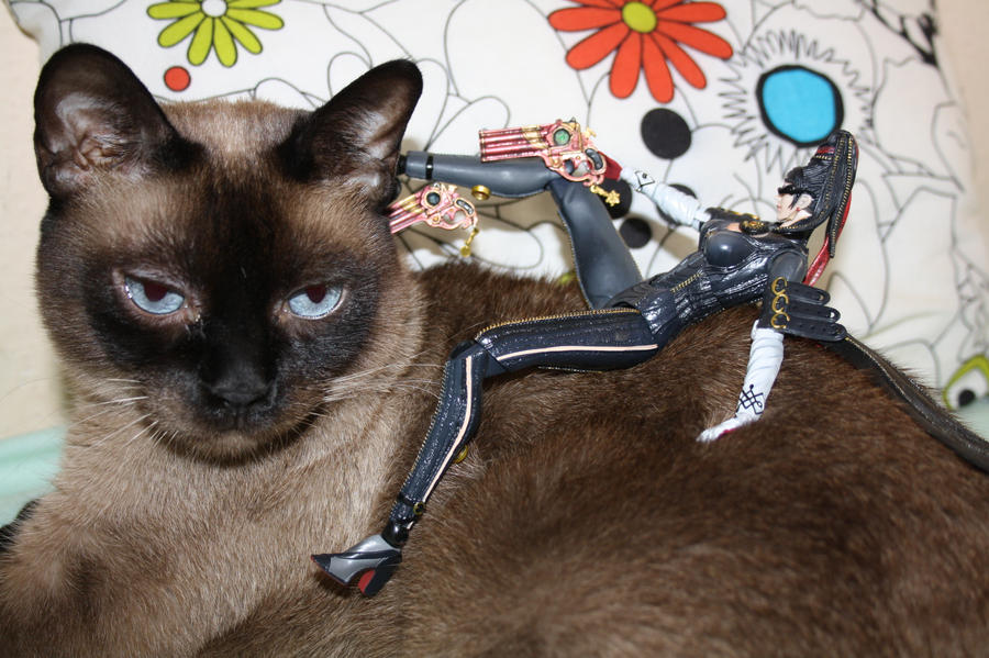 Bayonetta tames my cat by Yuki-Myst