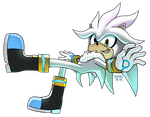Group Collab - SILVER THE HEDGEHOG