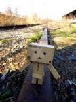 abandoned railroad tracks 002