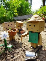 gardening by Hiromi-Sakakibara
