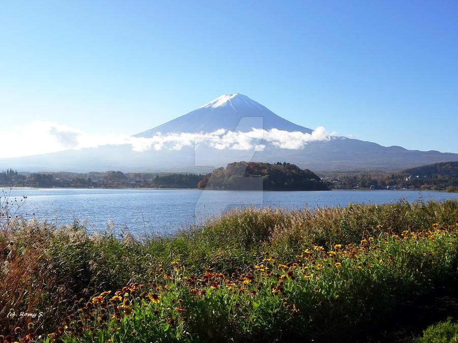 Fuji and Kawaguchiko nature