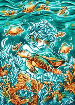 MerMay: Turtle