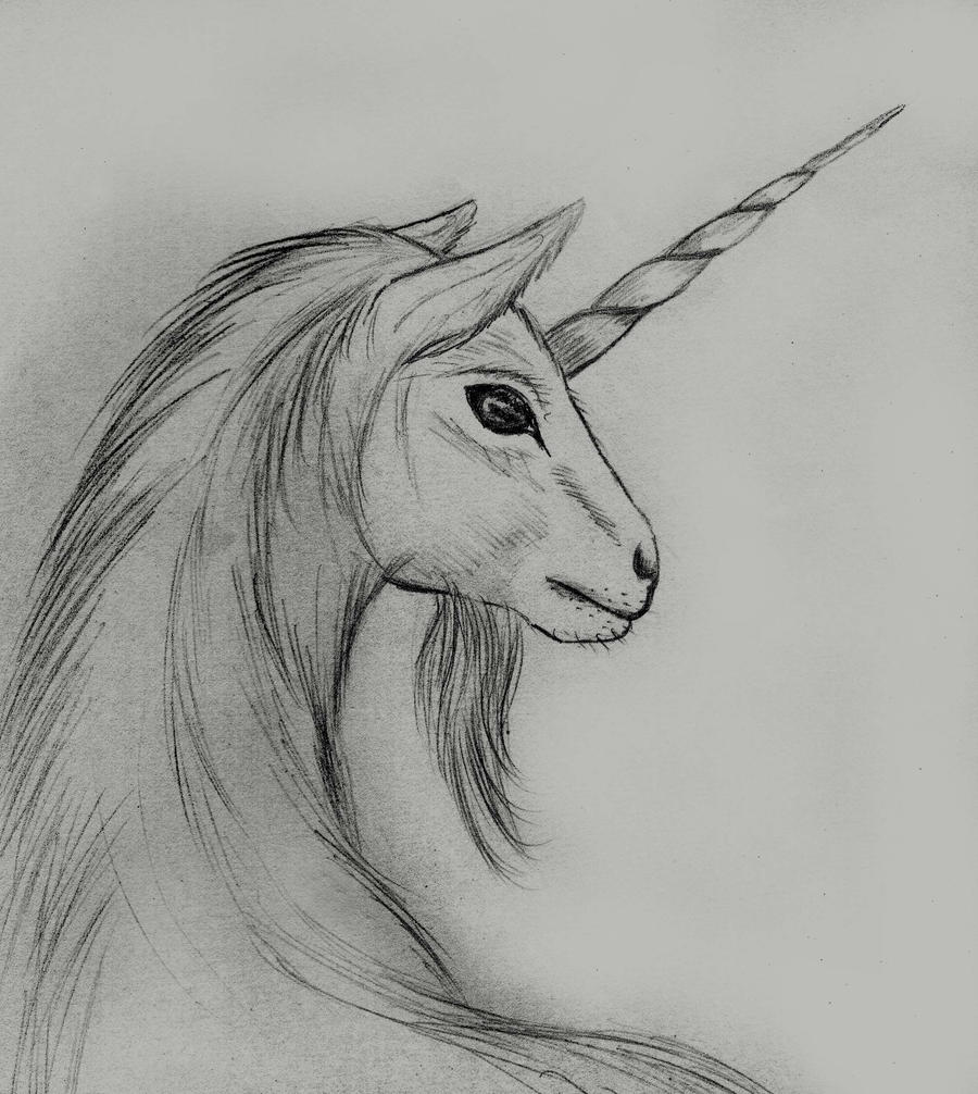 The gallery for --> Realistic Coloring Pages Of Unicorns