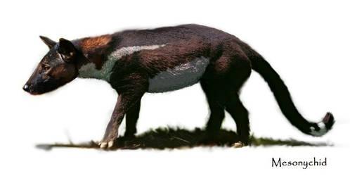Mesonychid (Mesonyx)