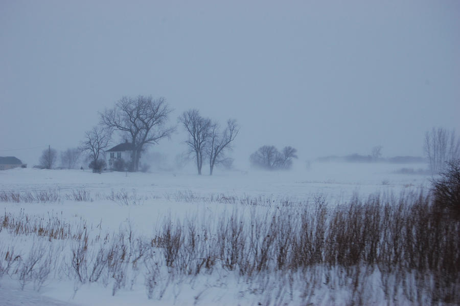 Winter in the Field by Davring
