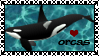 Orcas STAMP by SheilaMBrinson