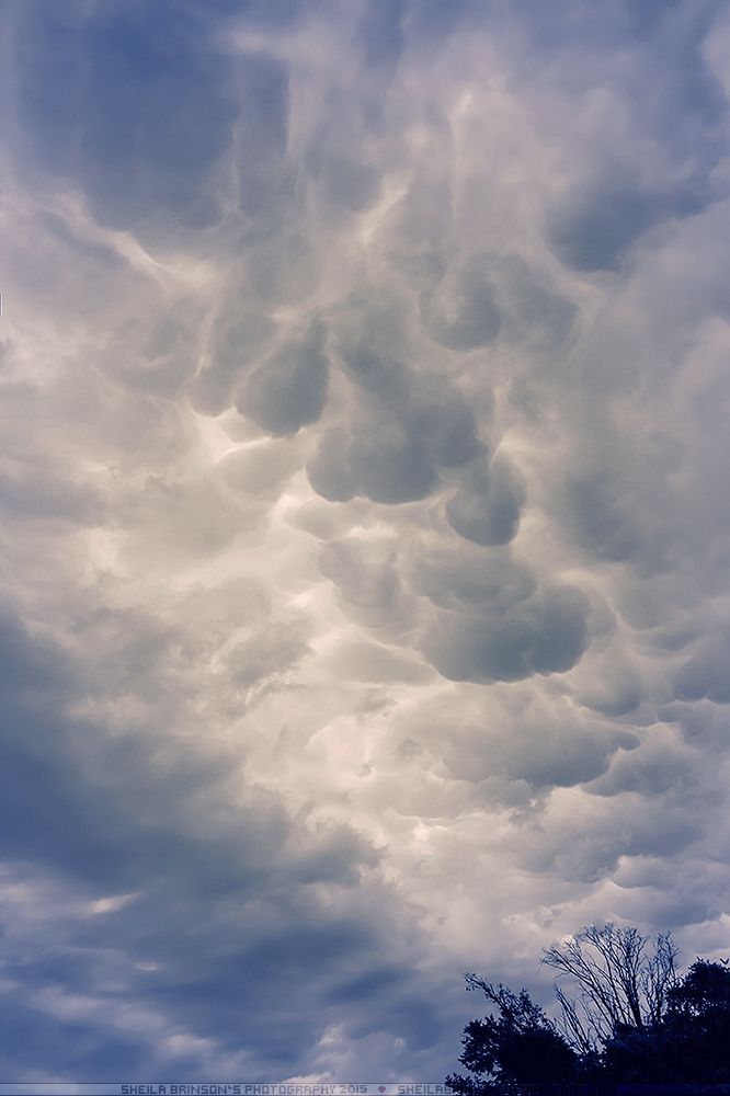 Unpredictable Cloud Changes by SheilaBrinson