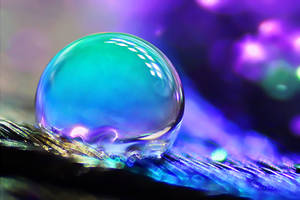 Drops Little World by SheilaMB-Photography