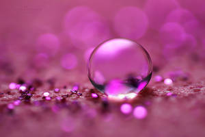 Pink Little World by SheilaMB-Photography